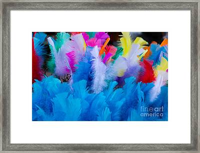 Coloured Easter Feathers Framed Print