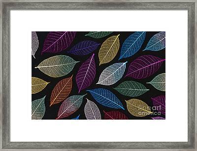 Coloured Leaf Skeleton Pattern Framed Print