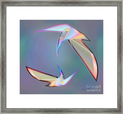 Colourful Plumage  2 Framed Print by Iris Gelbart