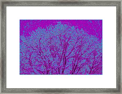 Colourful Silhouette Framed Print by Sonali Gangane