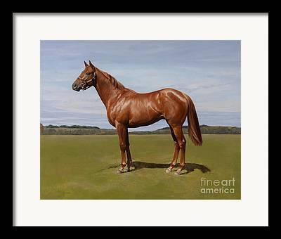 Horse Cards Framed Prints