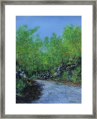 Columbia Trail Framed Print by Ken Ahlering