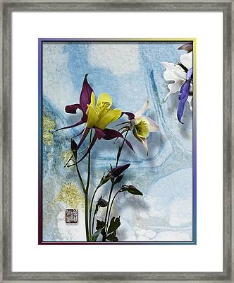 Columbine Blossom With Suminagashi Ink Framed Print