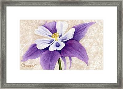 Columbine In Violet Framed Print by Vikki Wicks