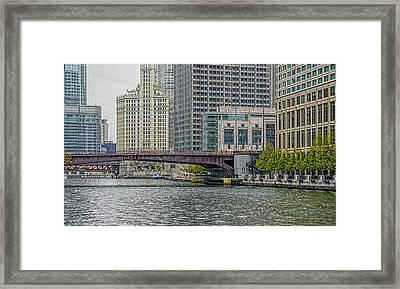 Columbus Drive Framed Print by Jenny Hudson