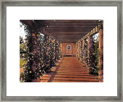 Columns And Flowers 2 Framed Print by Terry Reynoldson