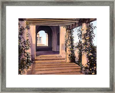 Columns And Flowers Framed Print