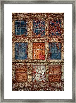 Columns And Rows Framed Print