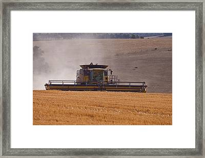 Combine Harvester And Cows Framed Print by Michelle Wrighton