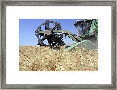 Combine Harvester  Framed Print by Shay Fogelman