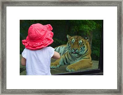 Framed Print featuring the photograph Come A Little Closer by Dave Files