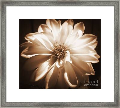 Come Closer Framed Print by Patti Whitten