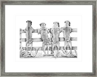 Come Back Framed Print by Nigel  Fuller