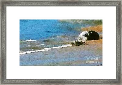 Come Come A'ama Crab Framed Print