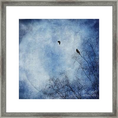 Come Fly With Me Framed Print by Priska Wettstein
