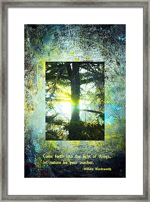 Come Into The Light With Nature Framed Print