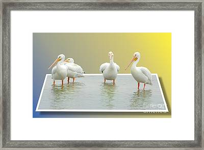 Come On In The Water Is Fine Framed Print