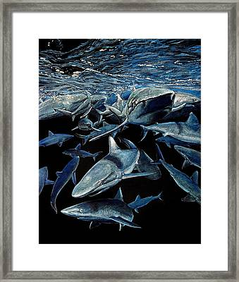 Come On In The Water's Fine Framed Print