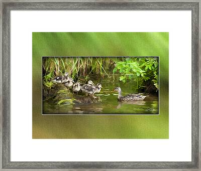 Come On...the Waters Fine. Framed Print by Diane Hagler