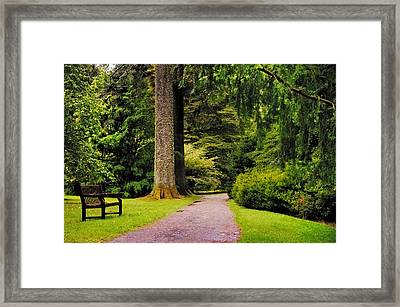 Come Sit With Me. Benmore Botanical Garden. Scotland Framed Print by Jenny Rainbow