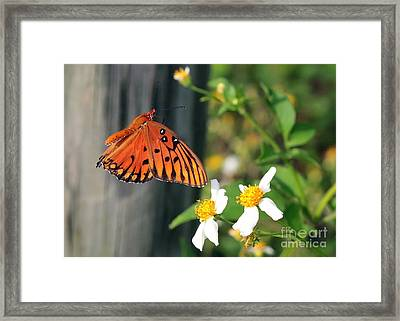Come To Me Framed Print by Carol Groenen