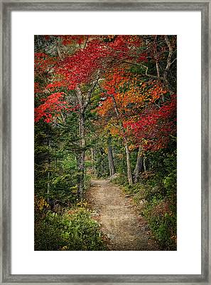 Come Walk With Me Framed Print by Priscilla Burgers