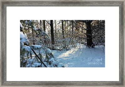Come Warmth Of Winter's Sun Framed Print