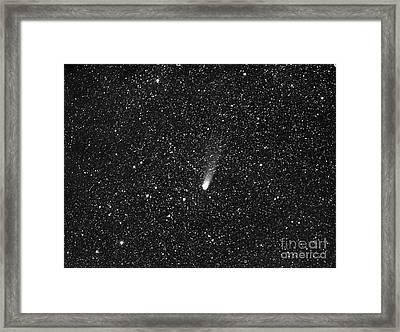 Comet Bradfield Framed Print