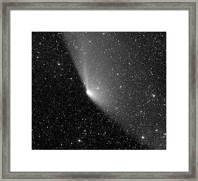 Comet C2011 L4 Framed Print by Damian Peach