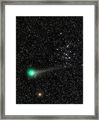 Comet C2013 R1 And Star Cluster M44 Framed Print by Damian Peach