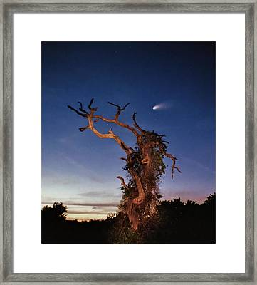 Comet Catcher. Lake Gentry. Framed Print by Chris  Kusik