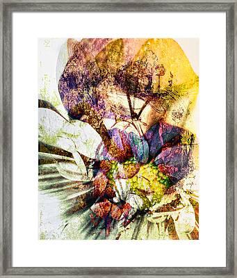 Comfort In Grief Framed Print by Joe Misrasi
