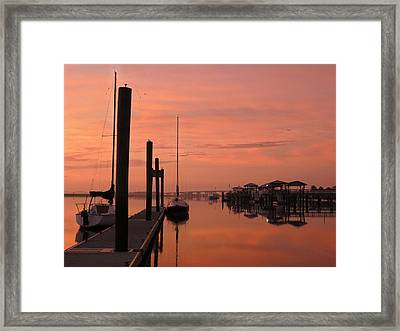 Framed Print featuring the photograph Just Rosy by Laura Ragland