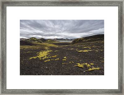 Coming And Going Framed Print by Jon Glaser