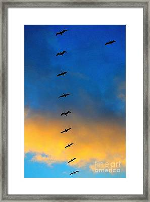 Coming Home 2 Framed Print by Theresa Ramos-DuVon