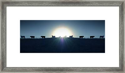 Coming Home Framed Print by Mike McGlothlen