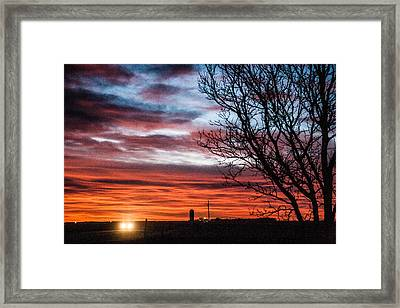 Coming Home Framed Print by Shirley Heier