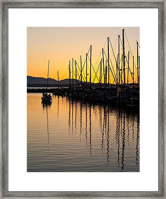 Coming In Framed Print by Mike Reid