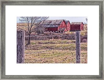 Coming Into Spring  Framed Print