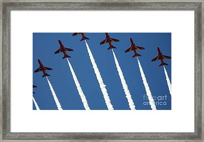 Coming To  Land Framed Print by Tracey Williams