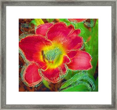 Coming To Life Framed Print by Anne-Elizabeth Whiteway
