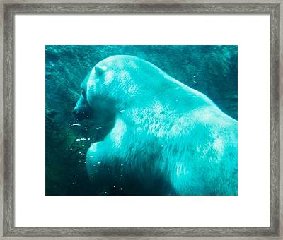 Framed Print featuring the digital art Coming Up For Air by Al Fritz