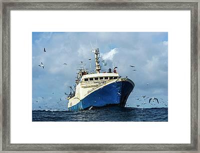 Commercial Purse-sein Trawler Framed Print