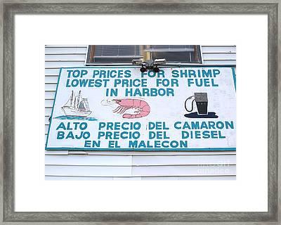 Commercial Shrimp Business In Ft Myers Florida Posted Sign Framed Print by Robert Birkenes