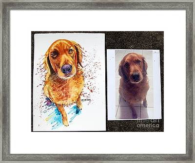 Commissioned Dog #1 Framed Print by Maria Barry