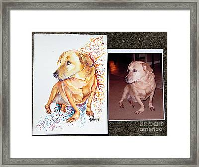 Commissioned Dog #2 Framed Print by Maria Barry