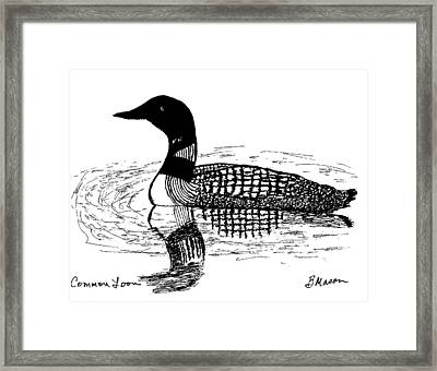 Common Loon Framed Print by Becky Mason