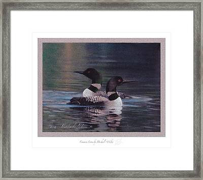 Common Loons Framed Print by Michael  Weber