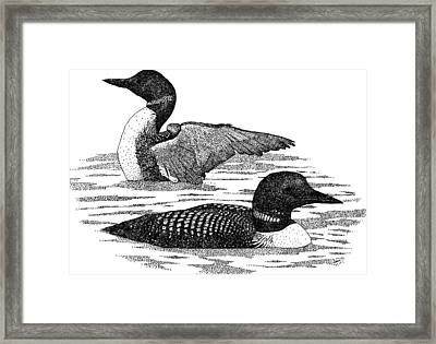 Common Loons Framed Print by Roger Hall
