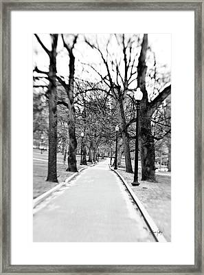 Commons Park Pathway Framed Print